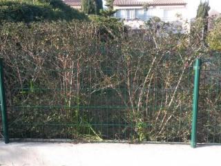 Clôture rigide autour du jardin