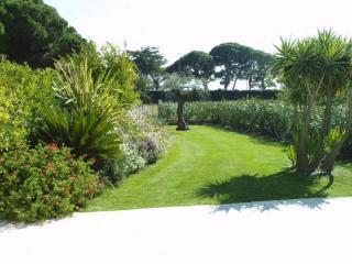 Entretien de jardin réussi dans une villa du Var