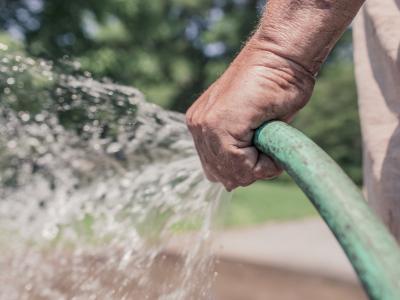 Arrosage de jardin en été : les conseils de votre jardinier à Sainte Maxime