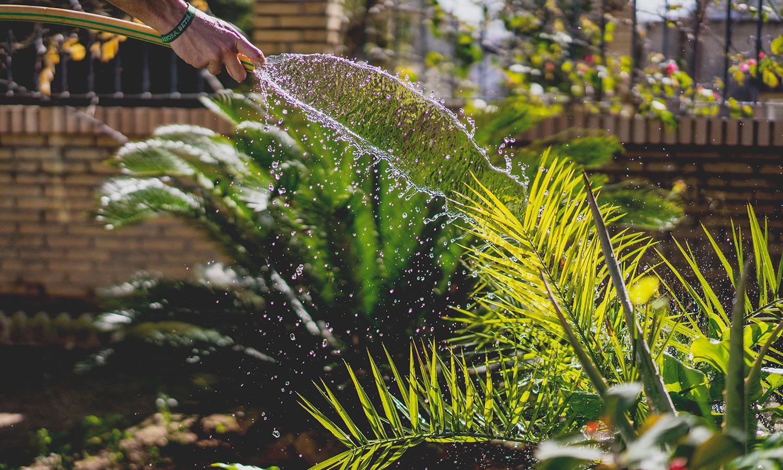 Création & entretien de jardins