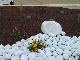 Un jardin sec créé par notre équipe de jardiniers paysagistes