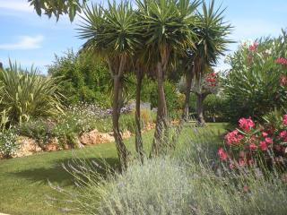 Massifs fleuris , plantations de type méditerranéenne