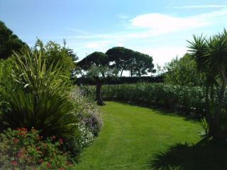 Travaux d'entretien de jardin terminés avec tailles de végétaux