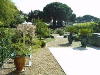 Taille et entretien de jardin . Ste Maxime