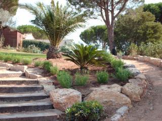 Création d'un escalier , et massif ornementale , jardin sec .