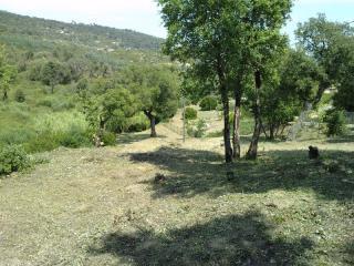 Action de débroussaillage dans un espace vert du Var