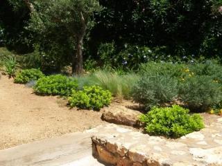 Des plantations par le jardinier paysagiste JCM Paysage à Sainte Maxime