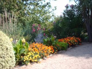 Une bordure fleurie créée dans le jardin