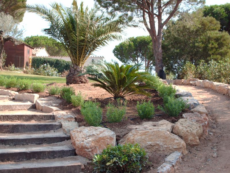 Cr ation de jardins secs ste maxime var for Creation massif jardin
