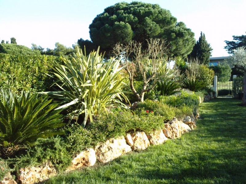 Entretien de jardin r novation espaces verts ste maxime for Entretien jardin printemps